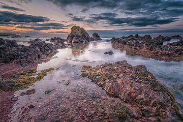 Felsige Küste bei Eyemouth von Sander Poppe