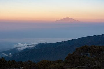 Kilimanjaro von Ronne Vinkx