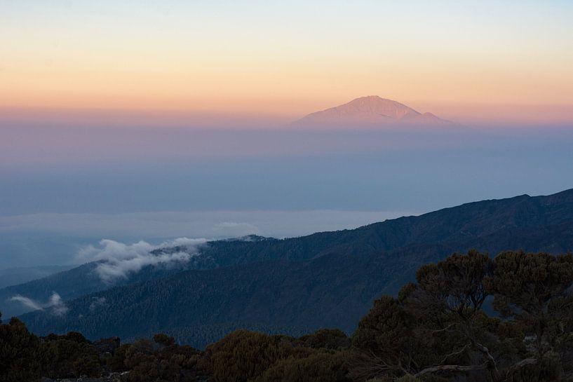 Kilimanjaro van Ronne Vinkx