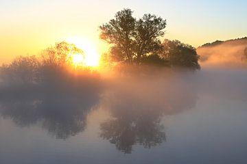 Lumière dans le brouillard sur