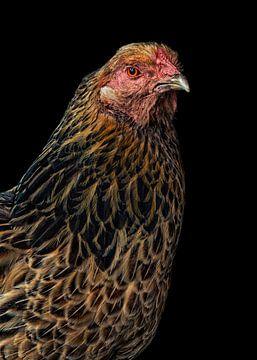 Huhn von Marielle Leenders