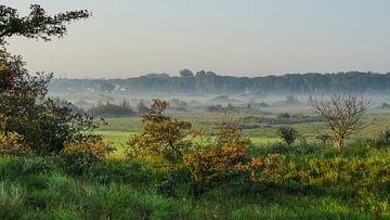 Wassenaar-Naturschutzgebiet Wassenaar Spring Spring Voyage von Dirk van Egmond