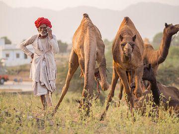 Kamelenhandelaar bij de Pushkar kamelenbeurs van Teun Janssen