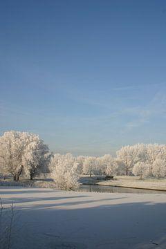 Winter van Erwin Woutersen