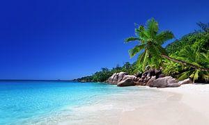 Strand van het eiland Praslin, Seychellen