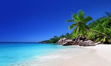 Strand van het eiland Praslin, Seychellen van Henny Hagenaars