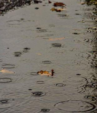 Regen druppels van Mascha Boot