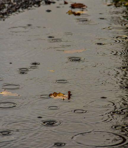 Regen druppels van
