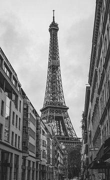 Eiffeltoren  Parijs van Freddie de Roeck