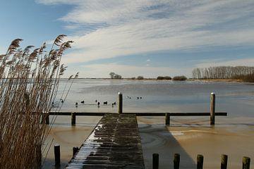 Uitzicht over het Sneekermeer van Pim van der Horst