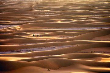 Sahara woestijn, Toeristen op Kamelen van Frans Lemmens