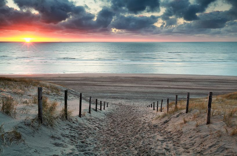 sand path to North sea beach at sunset van Olha Rohulya