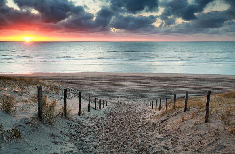 sand path to North sea beach at sunset sur Olha Rohulya