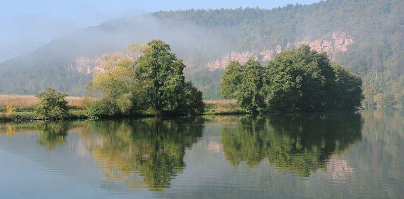 Een herfstochtend op de Main rivier van Gisela Scheffbuch