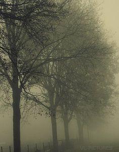 Mist in Emmen van Vl-pictures Vera-linde