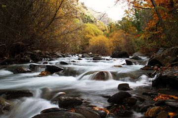 The Autumn River von Cornelis (Cees) Cornelissen