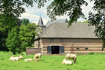 Oude boerderij met koeien van Nicolette Vermeulen