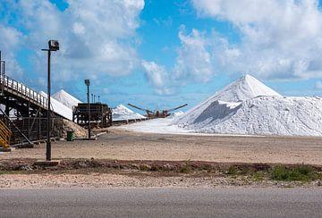 De hoge witte bergen zout bij de Zoutpannen met de transportband op Bonaire van Alie Messink