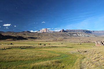 Valle Chacabuco in Patagonië op de grens tussen Argentinië en Chili van A. Hendriks