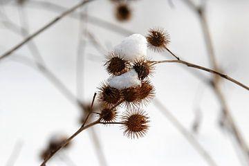 Wintertijd van Anette Jäger