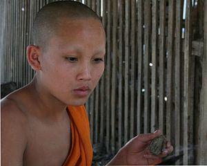 Boeddhistische monnik
