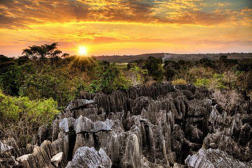 Tsingy de Bemaraha zonsondergang van Dennis van de Water