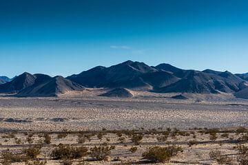 Mojave-Wüste -4 von Keesnan Dogger Fotografie
