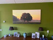 Klantfoto: Two oaks van Marcel van Rijn, op canvas