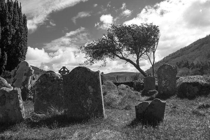 Grafstenen in de zon II van Peter Schütte