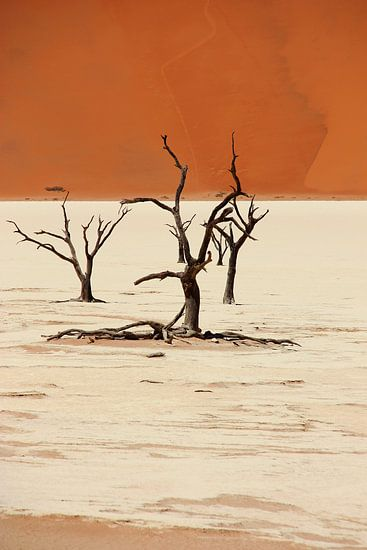 NAMIBIA ... Deadvlei II
