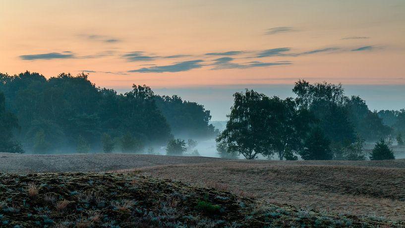 Misty Morning Bergerheide van William Mevissen