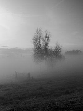 Nebliger Morgen III von Diane van Veen