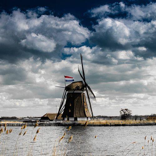 Eendrachtsmolen langs de Rotte met de Nederlandse vlag