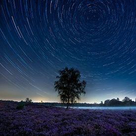 Traces d'étoiles au-dessus de la lande violette sur Ruud Engels