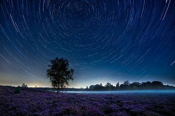Sternenspuren über der Violetten Heide von Ruud Engels