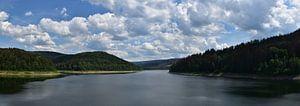 Panorama uitzicht over water en bos in Duitsland van Cor Brugman
