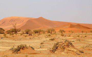 Zandduinen van de Sossusvlei in Namibië/ Sand Dunes at Sossusvlei in Namibië von