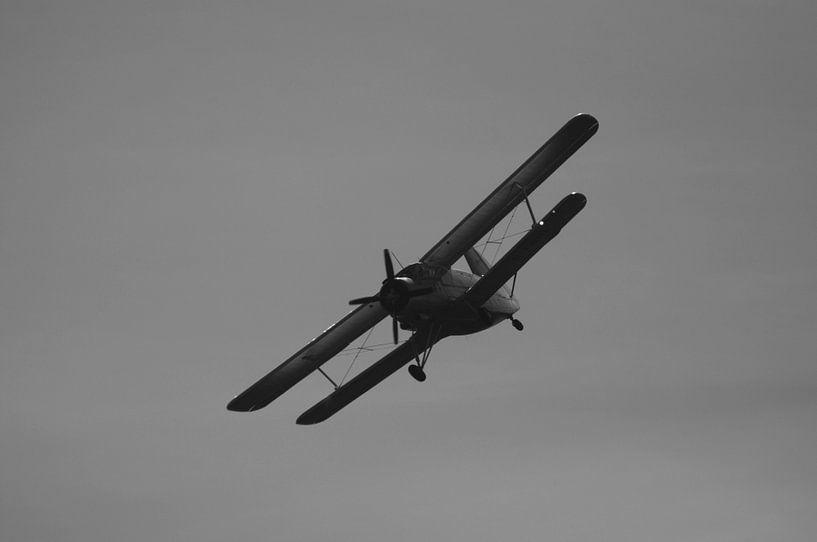 Antonow AN-2 Schwarz &Ampel; Weiß von Sebastiaan van der Ham