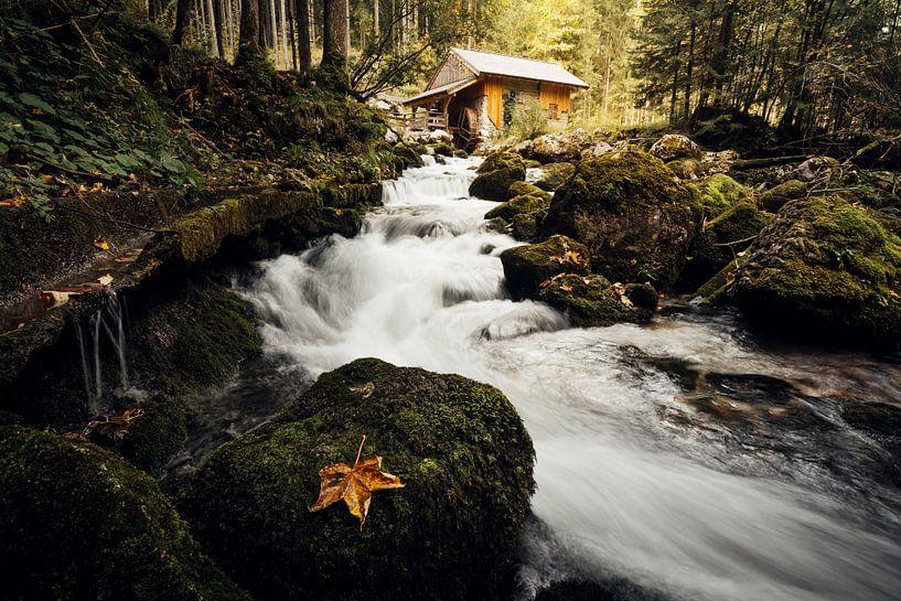 Gollinger Wassermühle van Alena Holtz