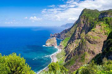 Uitzicht over de kustlijn van Madeira tijdens een mooie zomerdag van Sjoerd van der Wal