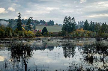 Mistige ochtend in Oregon van Derrick Kazemier