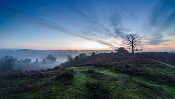 Magisch landschap (Posbank Rheden) van Frank Laurens