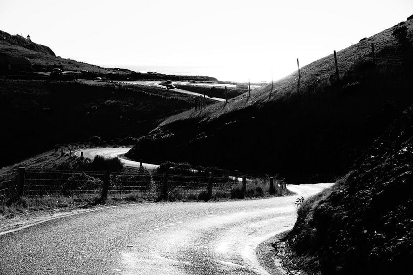Nieuw Zeeland - Otago Penisula sur Maurice Weststrate