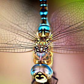 Libelle closeup van Fotografie Egmond