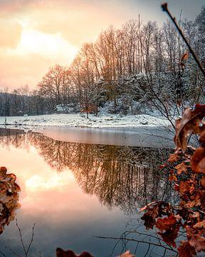 Wintersonne im See von Joris Machholz
