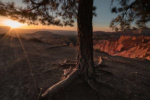De aanraking van de zon van Joris Pannemans - Loris Photography