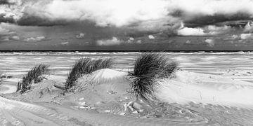 Strand Terschelling von Martien Hoogebeen Fotografie