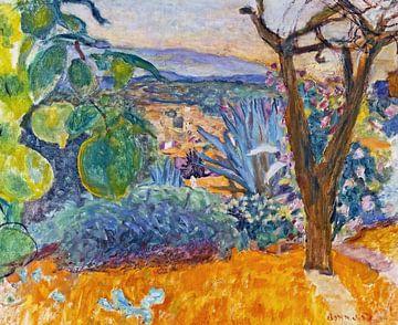 Le Cannet - Pierre Bonnard - 1930 von De Mooiste Kunst