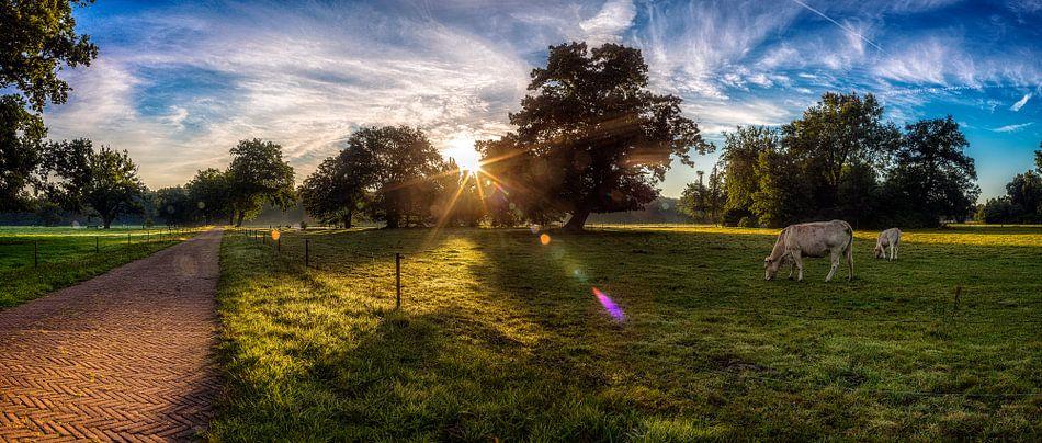 Landschap - landgoed Twickel van John Bouma