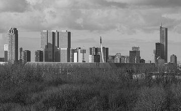 Het Feyenoord Stadion De Kuip in Rotterdam met de Kop van Zuid op de achtergrond